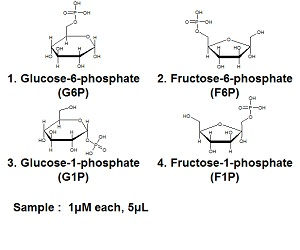phosphorylated saccharides